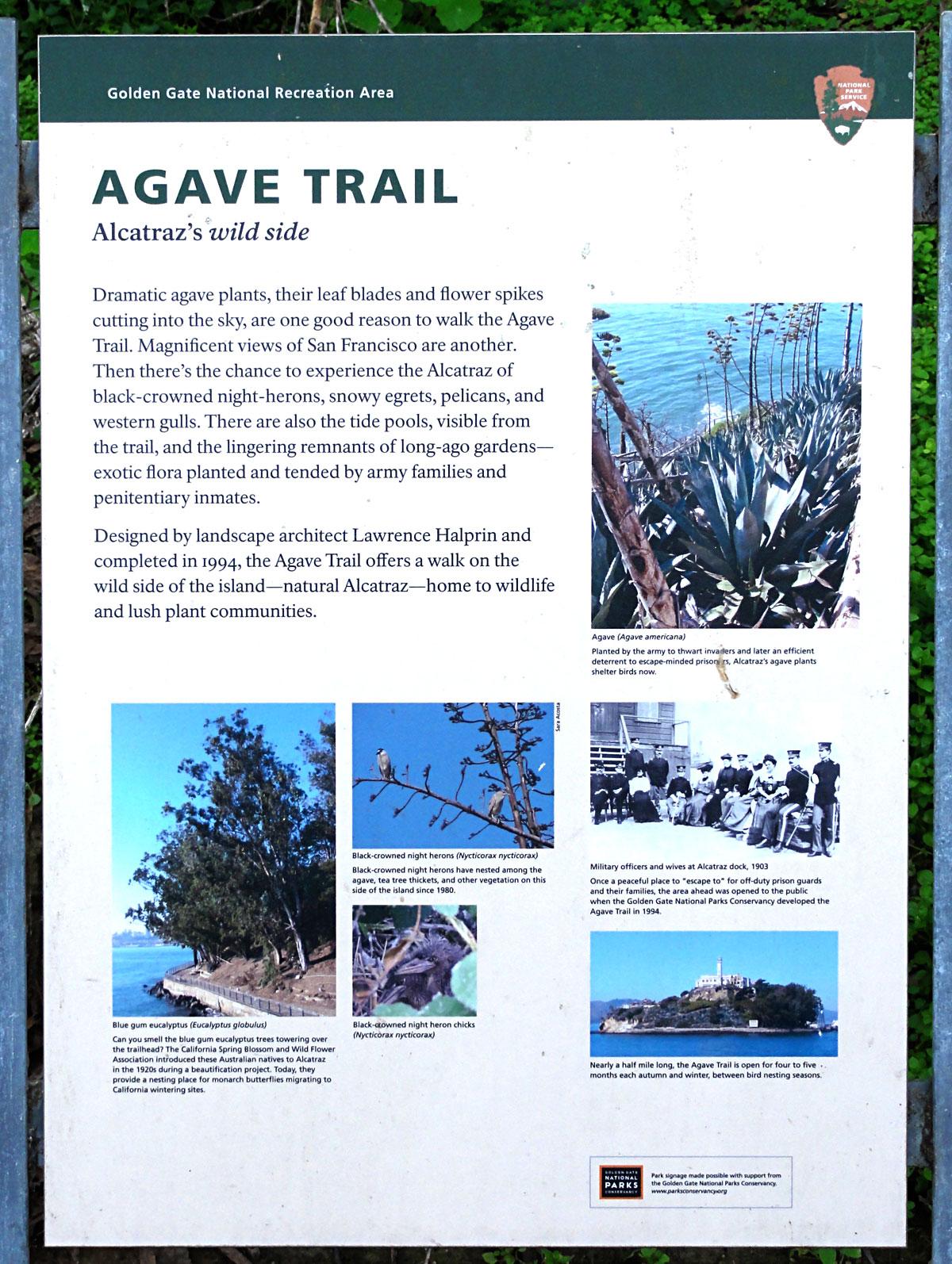 Agave_trail_2