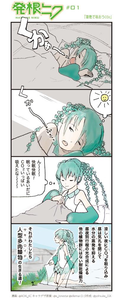 Hatsuneniku0001