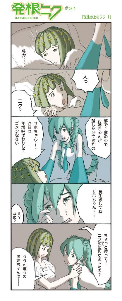 Hatsuneniku0021